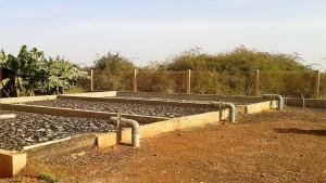 Solution extensive sans équipements électromécaniques : lits de séchage solaire en Afrique de l'Ouest