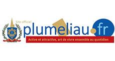 Image de  Plumeliau